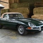 Jaguar Stock #0001
